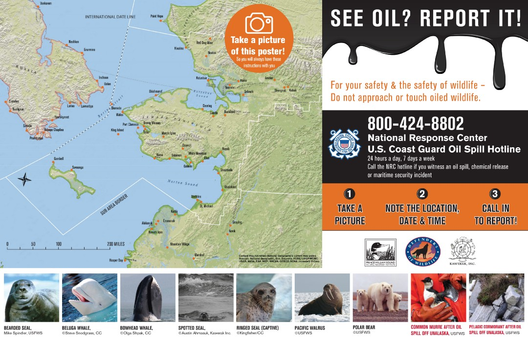 See oil? Report it Poster
