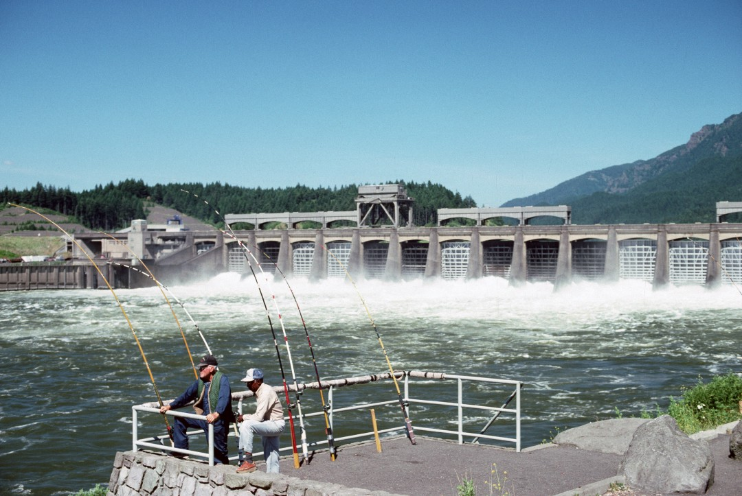 Fishing Bonneville Dam Columbia River Gorge National Scenic Area