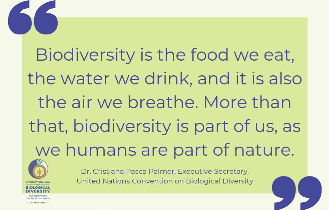 International Biological Diversity Day quote UN