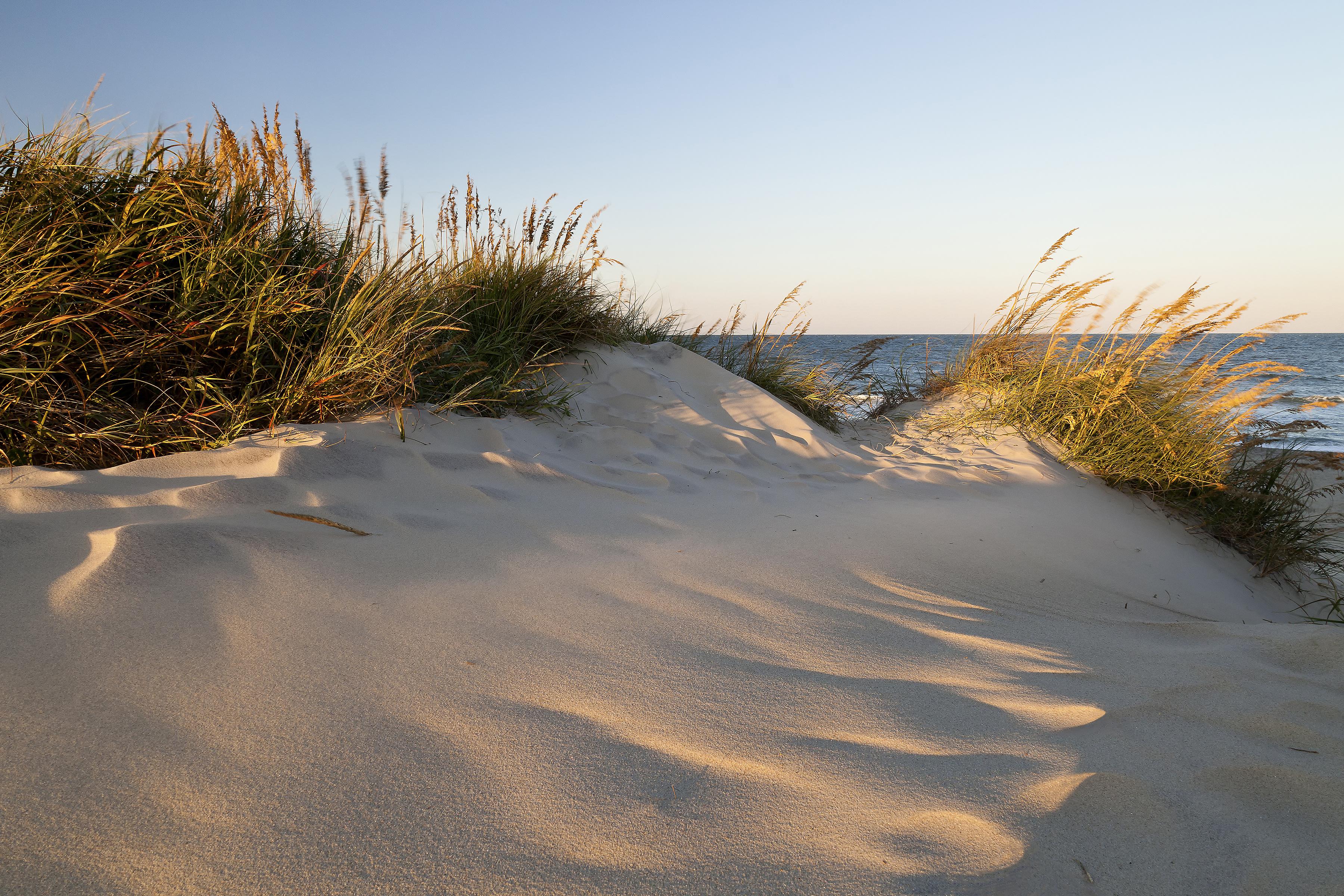 Pea Island NWR dunes Cape Hatteras