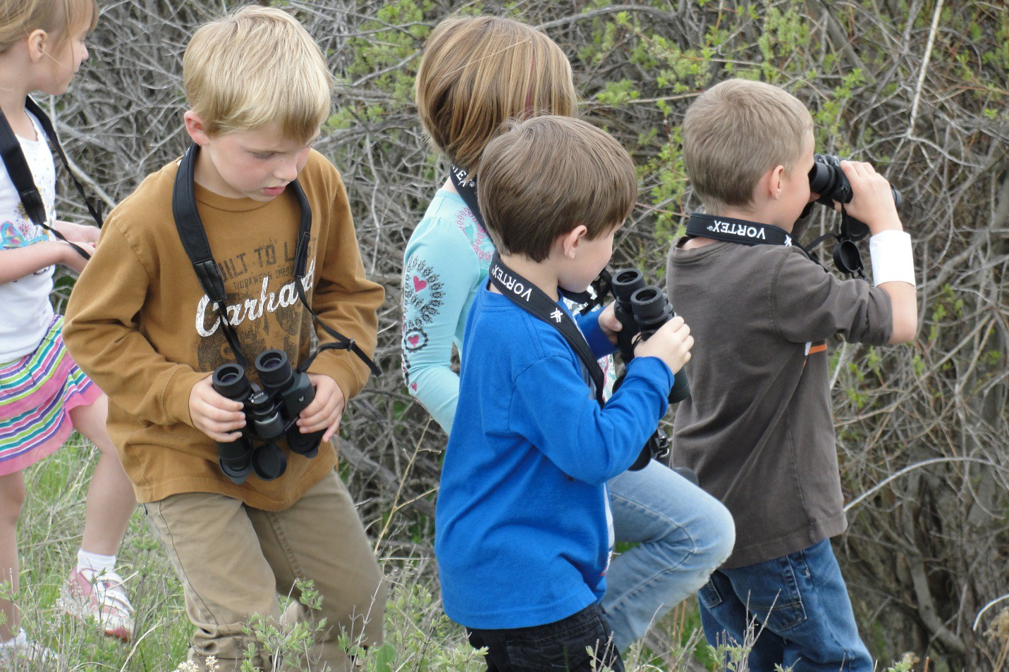 K — 6th grade students in the Lewistown Boys and Girls Club go bird watching
