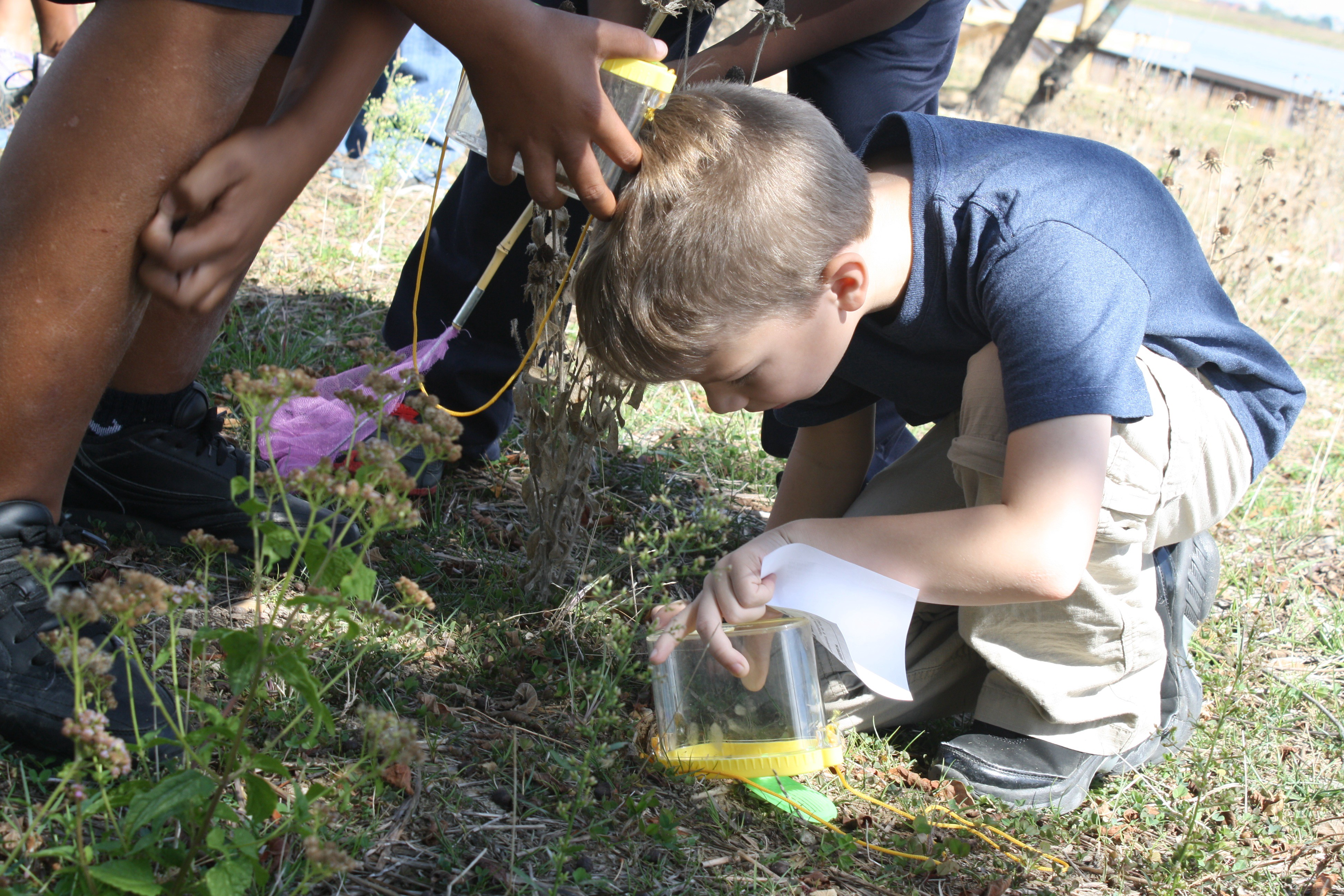 Masonville Cove Urban Wildlife Refuge Partnership kid