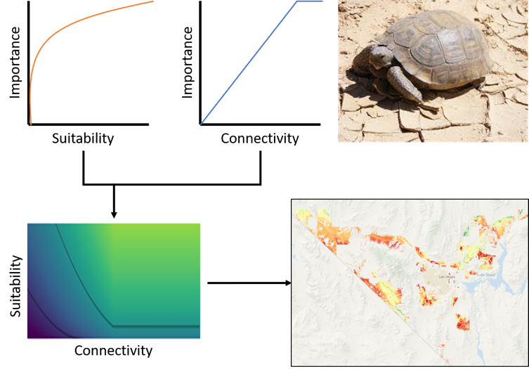 The tortoise and the solar panel graphic