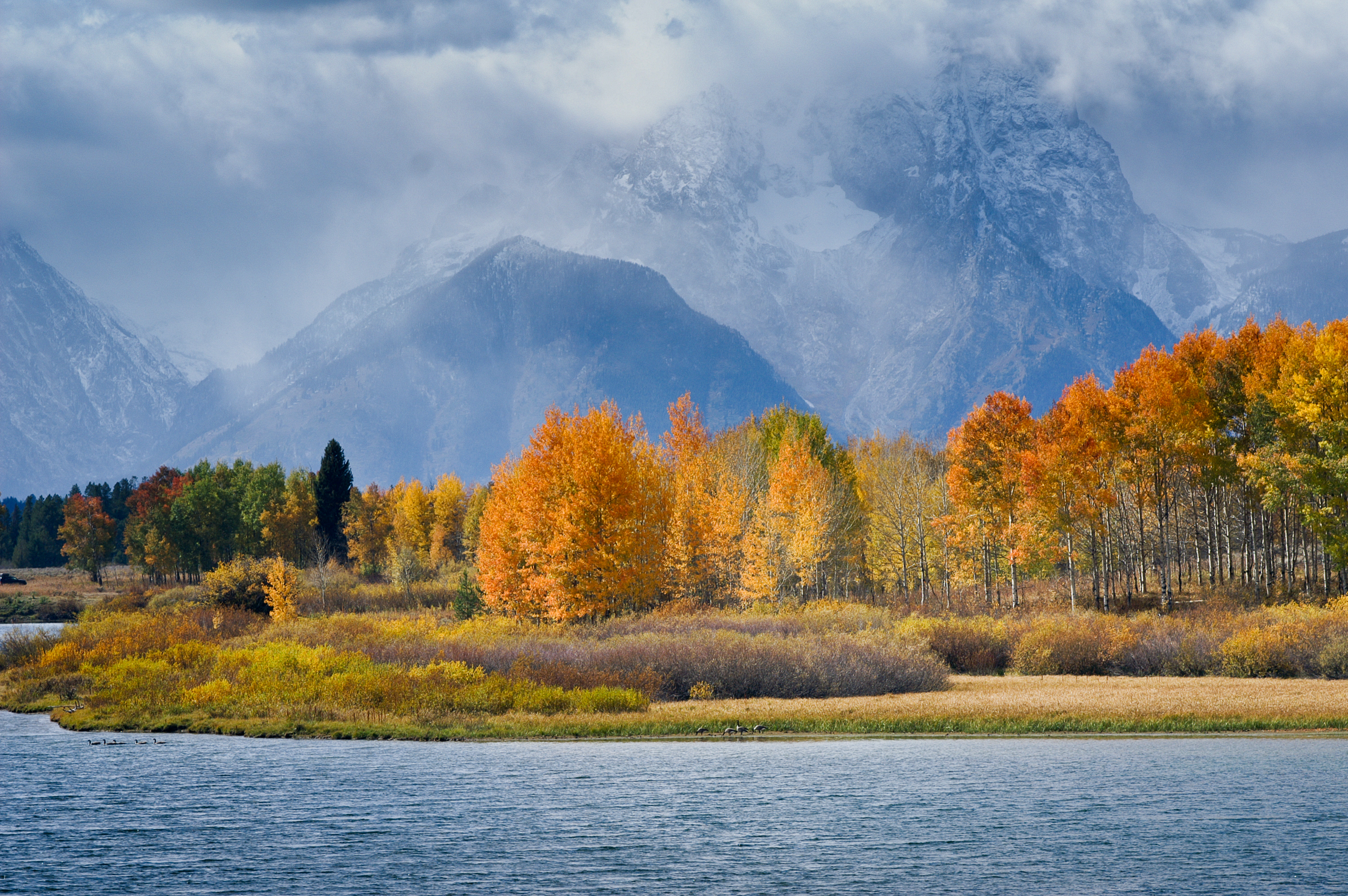 Fall colors Oxbow Bend Grand Teton NP