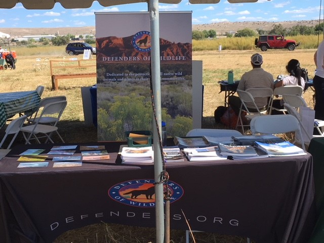 Defenders table at Valle de Oro NWR BYRD