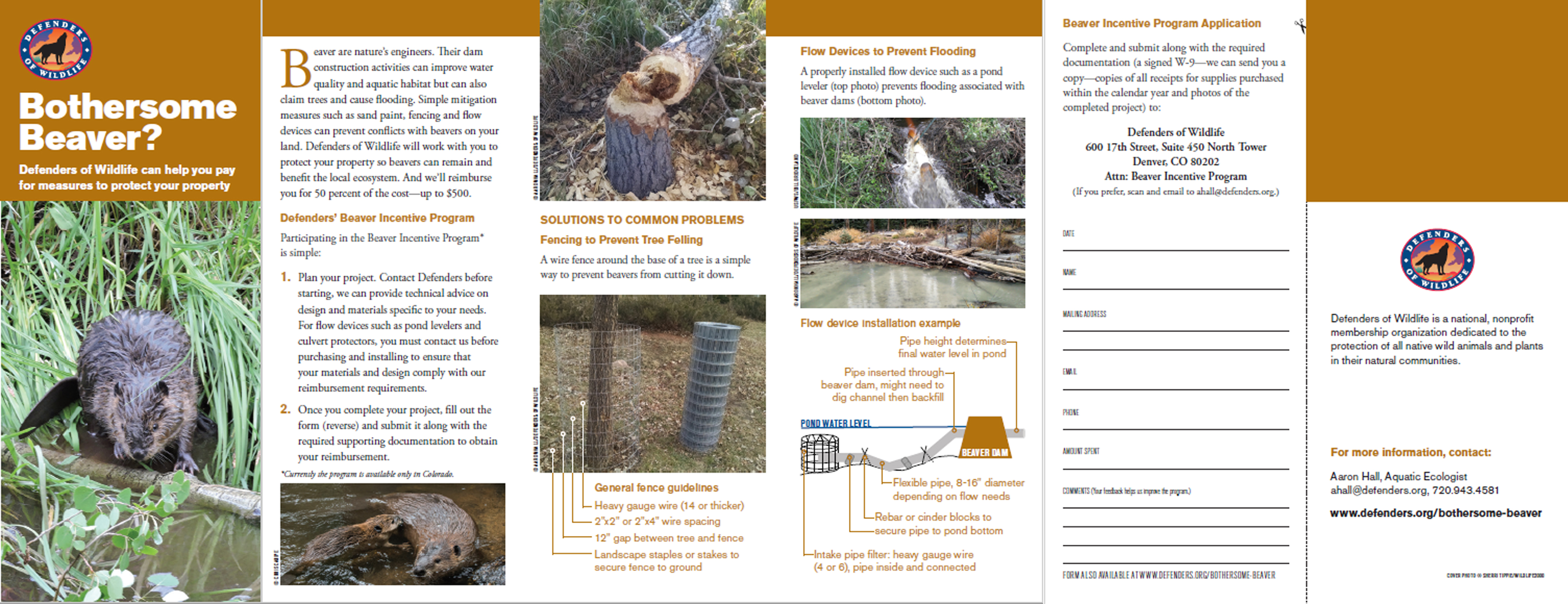 Bothersome Beaver Brochure