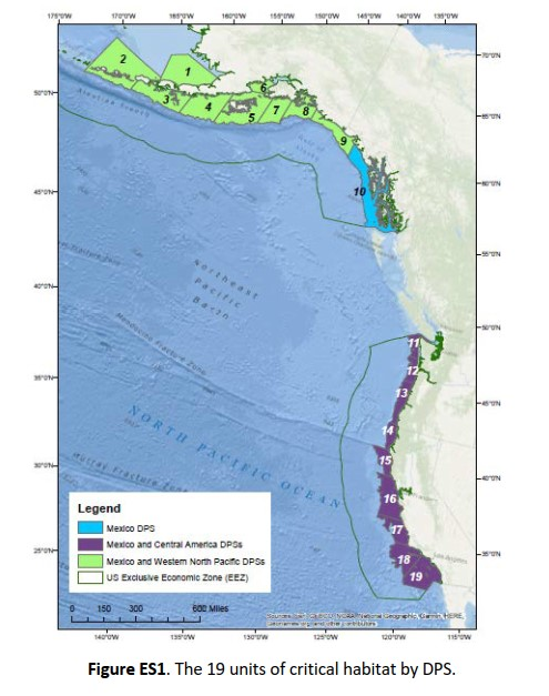Map illustrating the 19 units of Proposed Critical Habitat and the Three ESA Listed Designated Population Segments. From: NMFS Humpback Whale Critical Habitat Proposed Rule; Draft Biological Report 2019