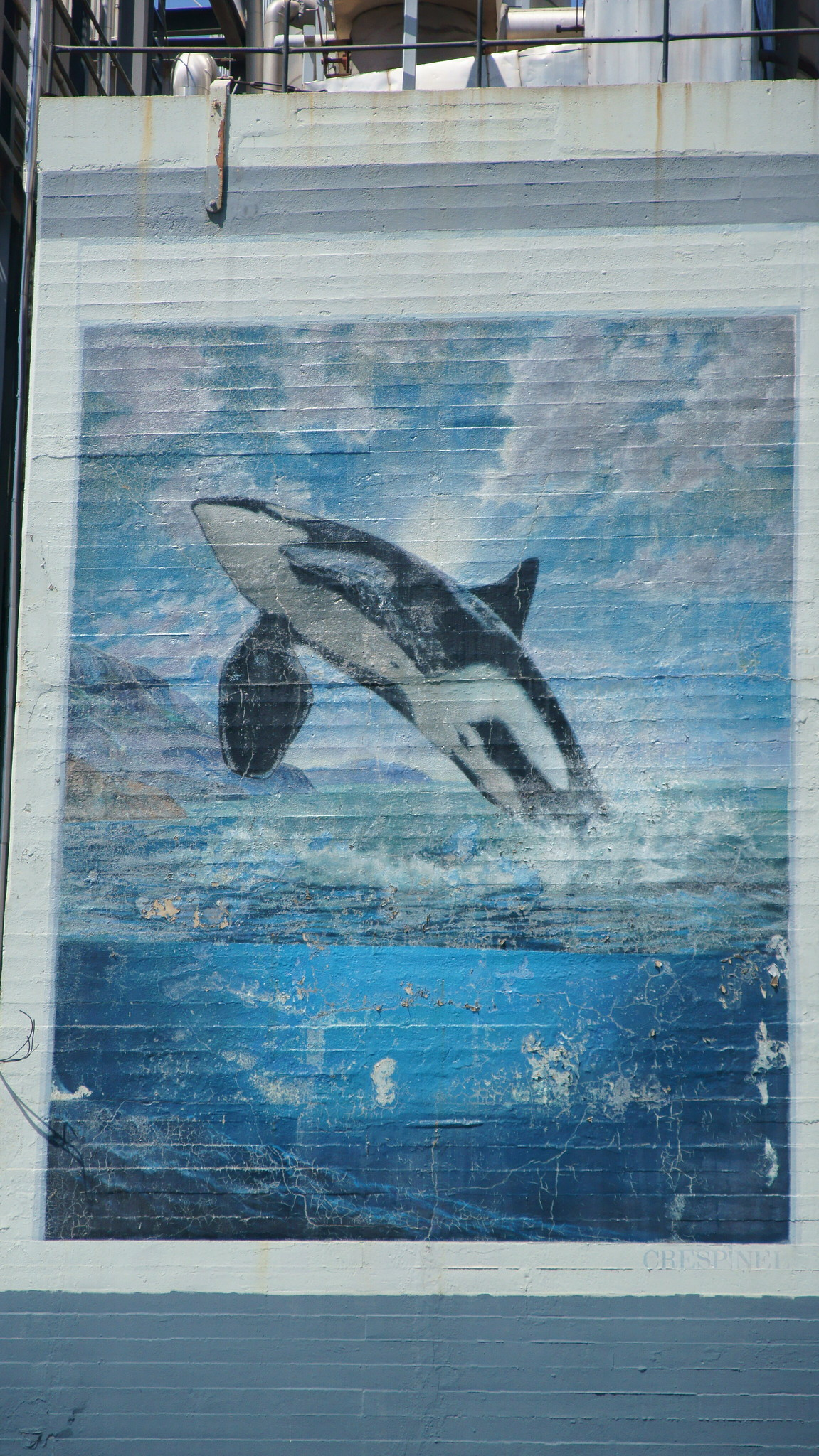 Orca Mural in Seattle