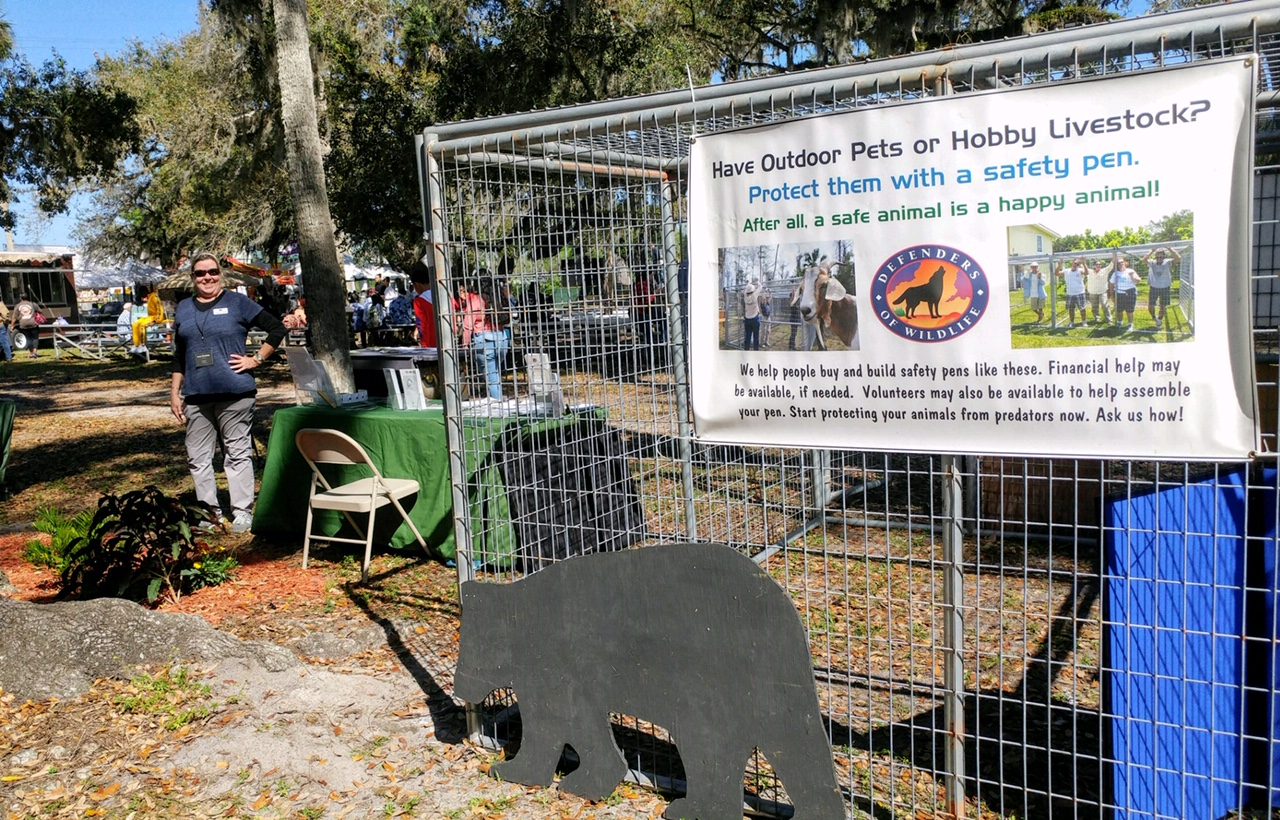 Livestock Pen at the Swamp Cabbage Festival in LaBelle, Florida