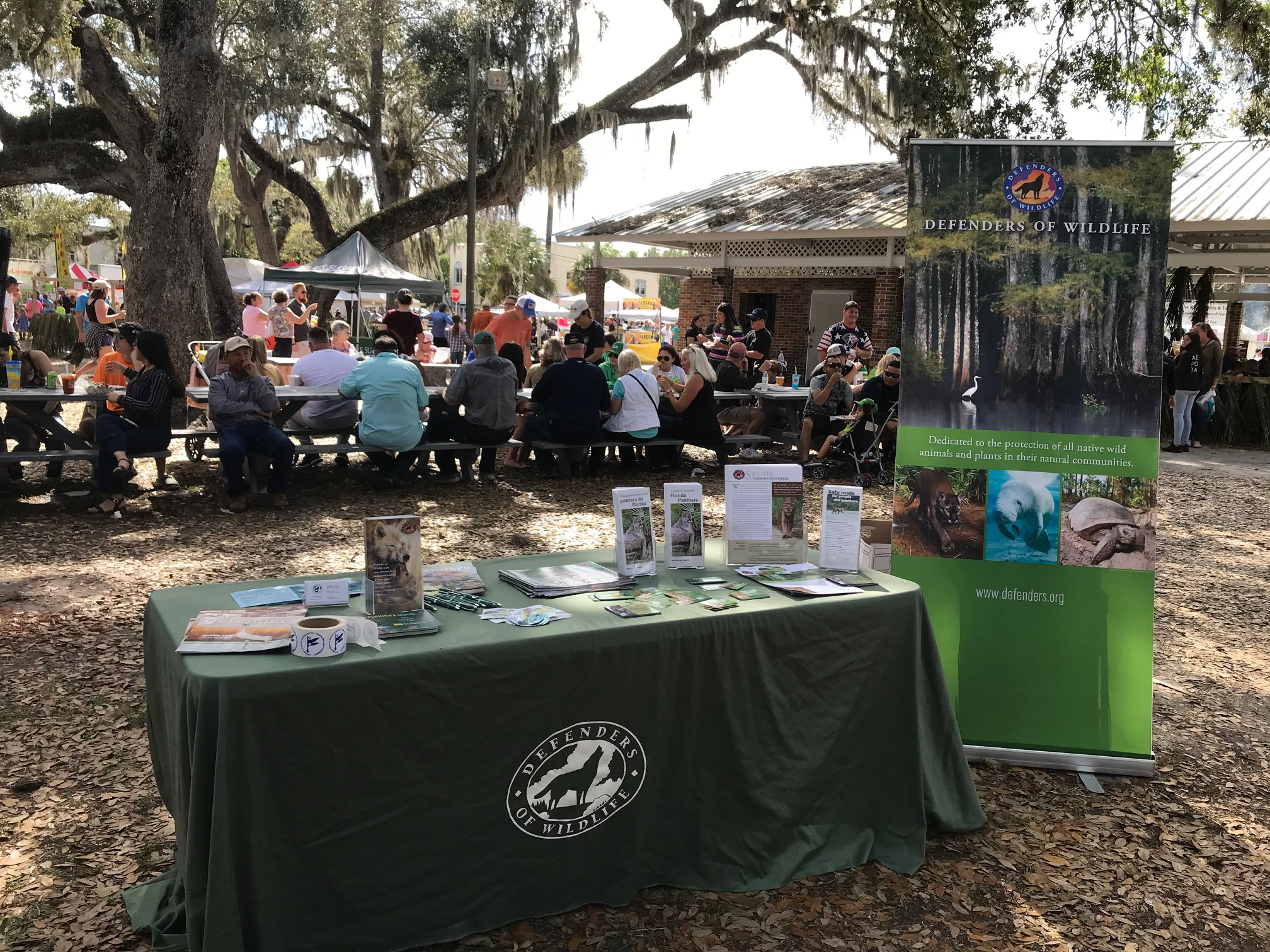 Tabling at the swamp cabbage festival in LaBelle, FL