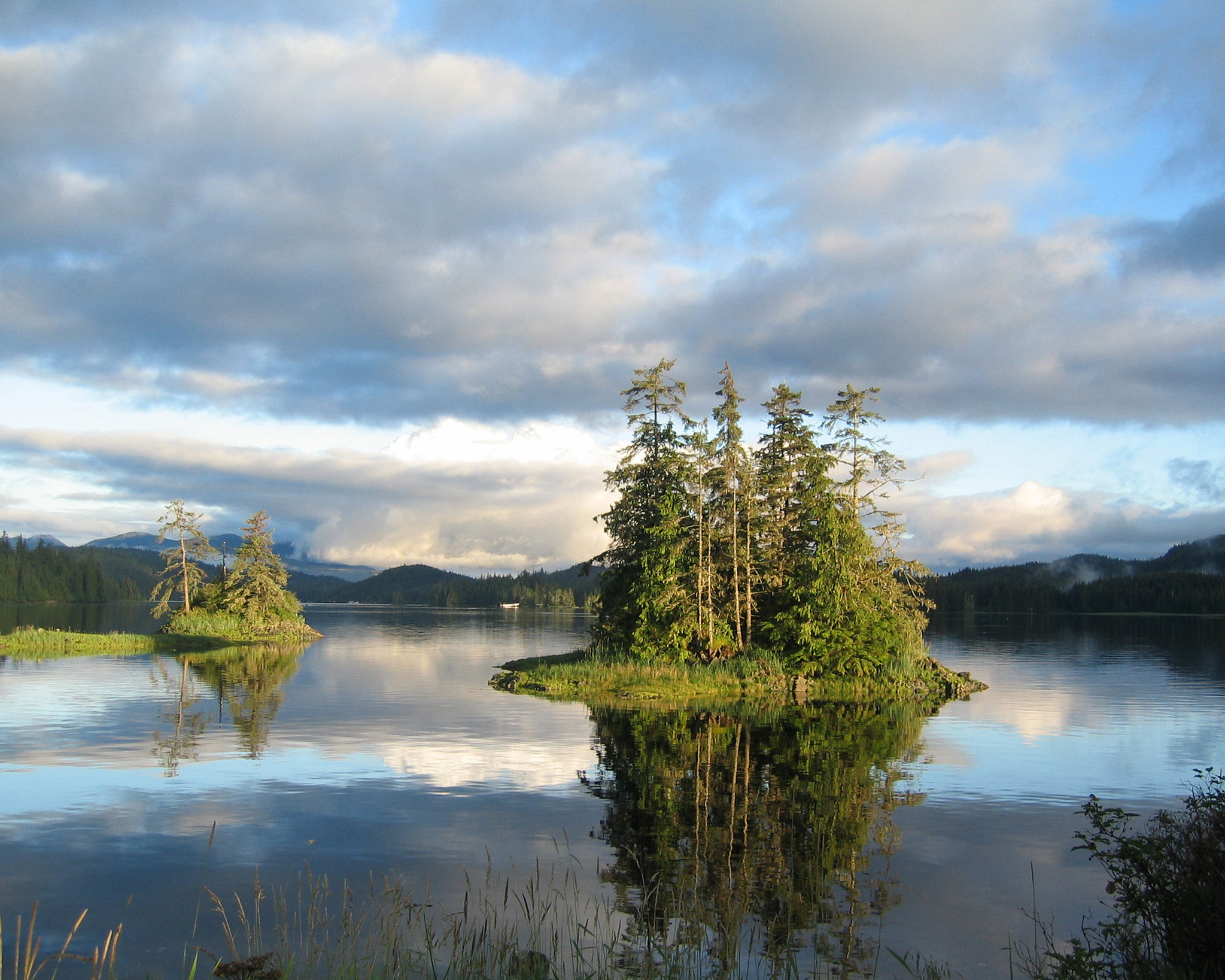 Thorne Bay in the Tongass National Forest