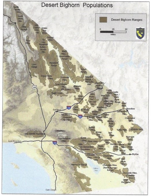 Desert bighorn sheep populations in the California Desert