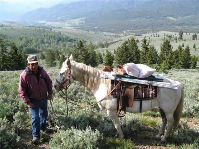 A herder and his horse make a trip to put up fladry to protect sheep in Wood River Idaho