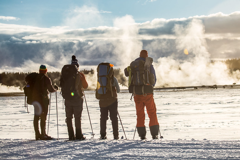 Skiers watch bison from the road, Lower Geyser Basin Yellowstone NP