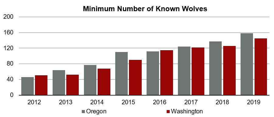 Graph of minimum number of gray wolves in Oregon and Washington 2012-2019