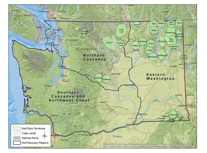 WA wolf map from 2019