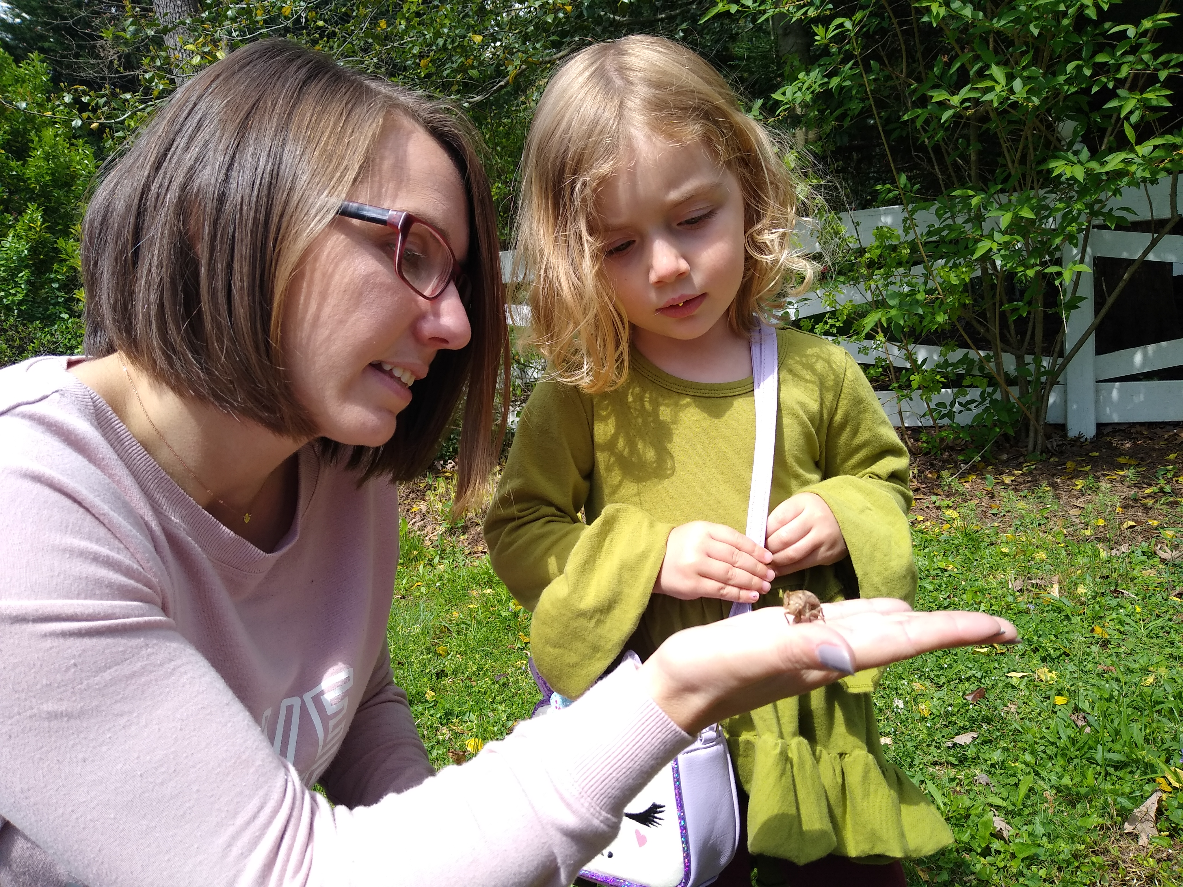 Lindsay and daughter looking at cicadas