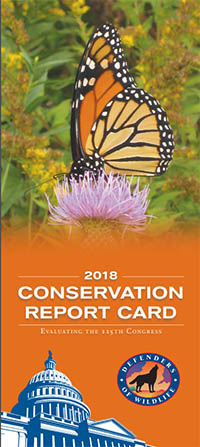 Conservation Report Card 2018