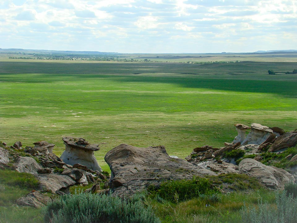 Landscape: Thunder Basin National Grassland