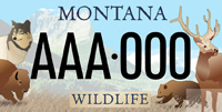 Montana License Plate Benefits Defenders of Wildlife