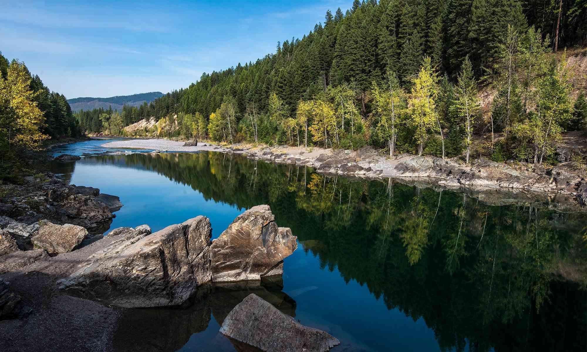 Wetlands and Rivers | Defenders of Wildlife