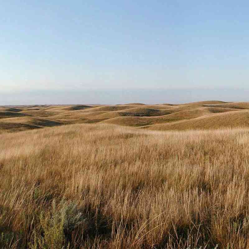 North Dakota Prairie