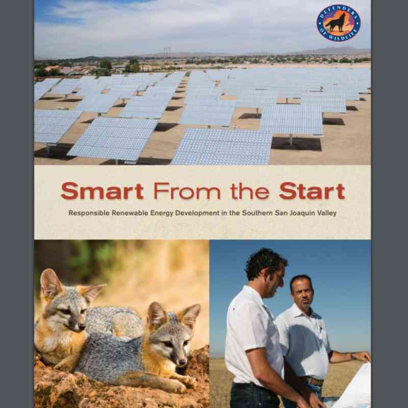 Smart from the Start Cover