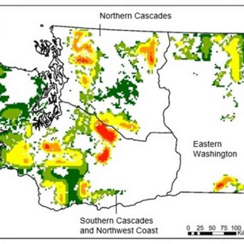 Predation risk map showing the probability of wolf depredation of cattle in Washington. Source: Hanley et al. 2018.