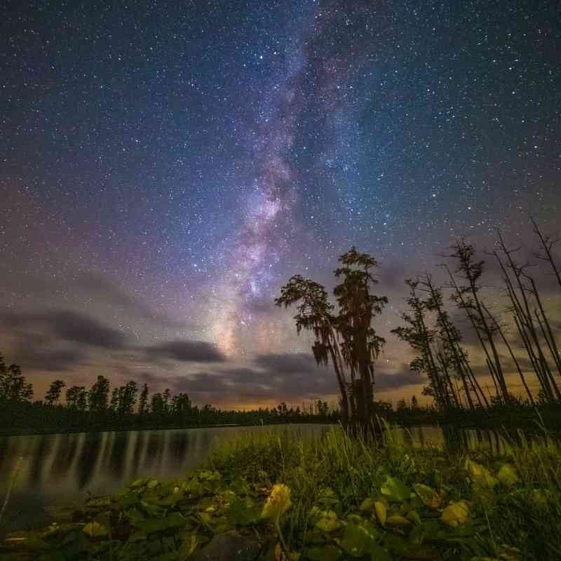 Milky way in the night sky Okefenokee NWR