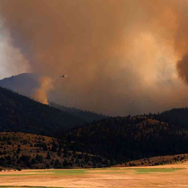 The Canyon Creek Complex Fire in the Malheur National Forest near Canyon City, Oregon began on Aug. 12, 2015 and has consumed an estimated 74,744 acres. The fire was caused by lightning. USFS photo.