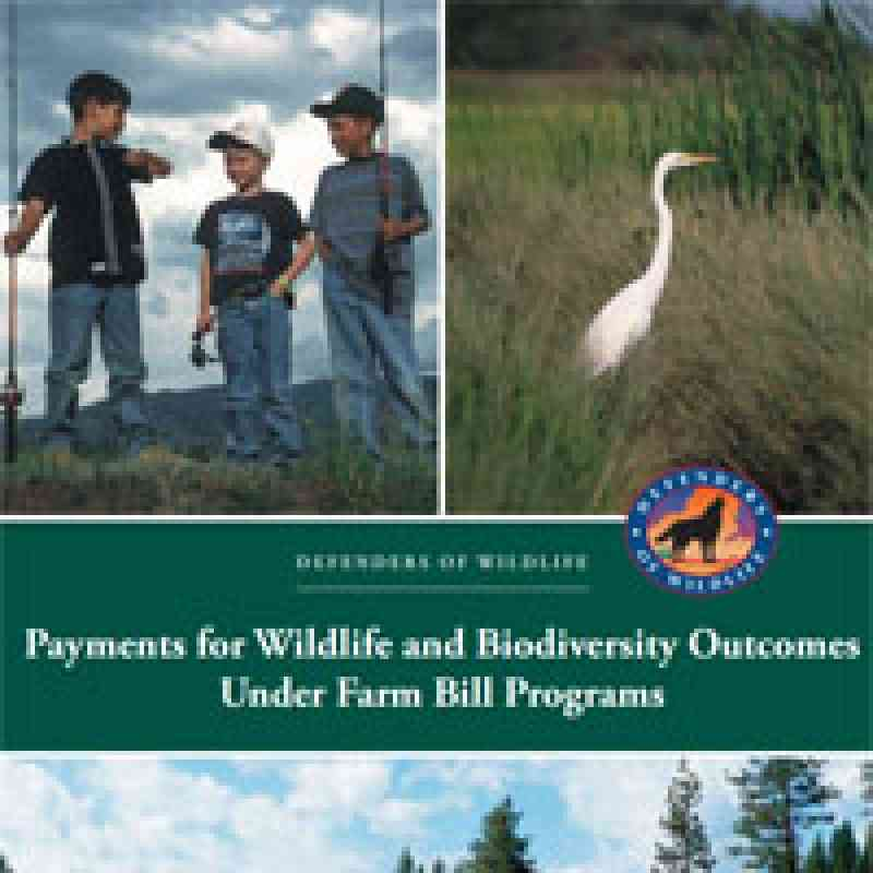 Payments for Wildlife and Biodiversity Outcomes Under Farm Bill Programs