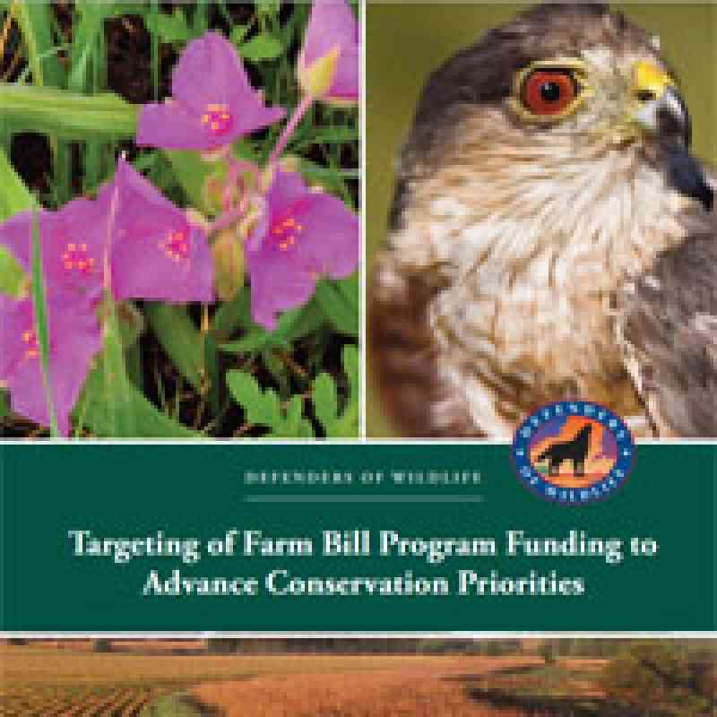 Targeting of Farm Bill Program Funding to Advance Conservation Priorities