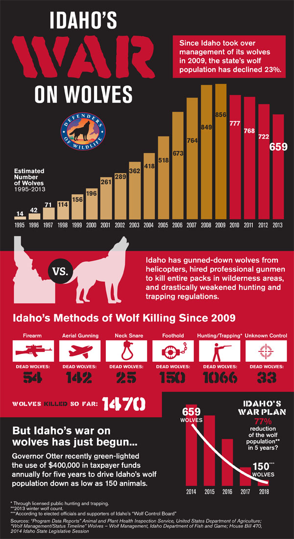 The War on Wolves Infographic - Defenders of Wildlife