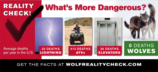 Wolf Reality Check